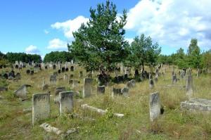 Den s.k. Nya judiska begravningsplatsen i Zarki, Polen, som började användas på 1820-talet. Zarki hade 1939 knappt 3000 judiska invånare.